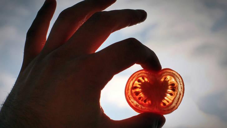Le lycopene de la tomate est un puissant antioxydant
